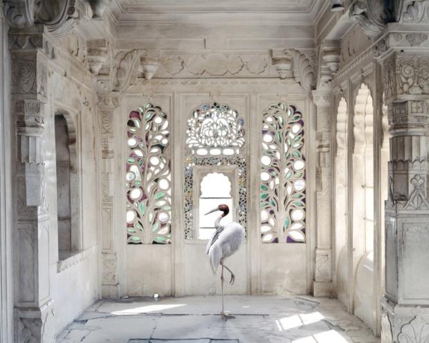 A-Place-like-Amravati-Udaipur-City-Palace-Udaipur