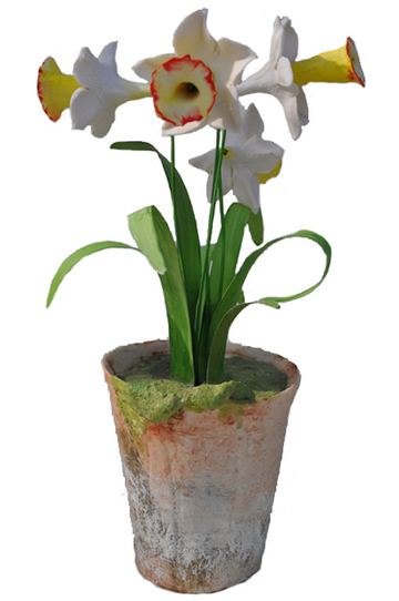 main_item_vieuxtemps-porcelain-on-taigan-daffodil