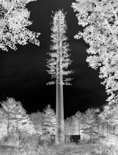 Fake Tree Tower, NY 2009